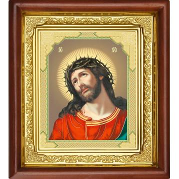Ікона Спас в терновому вінці 16-П-23
